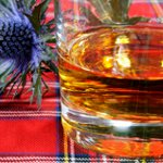 Tumbler of Scotch Whiskey