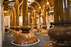 inside scotch whisky distillery